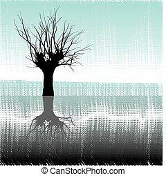 víz, fa
