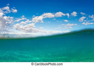 víz, tropikus, alatt, ég, óceán