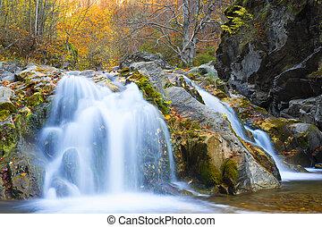 vízesés, alatt, ősz, évad