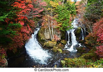 vízesés, alatt, ősz