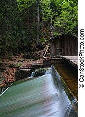 vízesés, alatt, a, nemzeti park