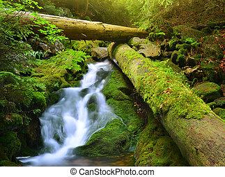 vízesés, alatt, a, nemzeti park, sumava