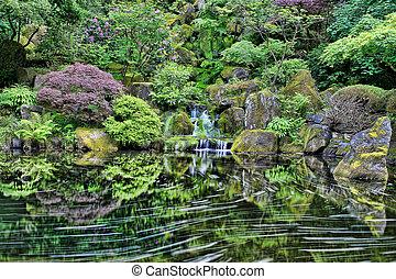 vízesés, -ban, portland, japanese kert