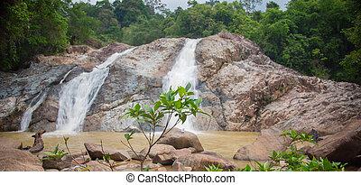 vízesés, dzsungel