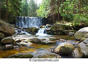 vízesés, erdő, folyik