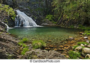 vízesés, erdő
