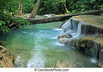 vízesés, erdő, mély