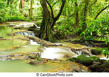 vízesés, gyönyörű, természet