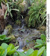 vízesés, kert