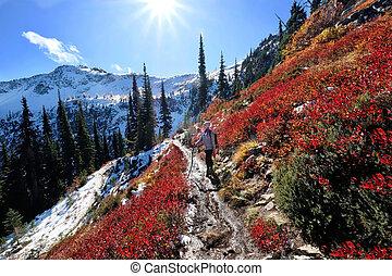 vízesés, utazás, hegy., szünidő