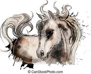vízfestmény, csinos, kevés, festmény, ló