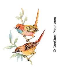 vízfestmény, erdő, twig., madarak