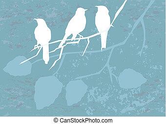 vögel, auf, grunge