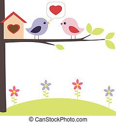 vögel, liebe