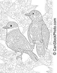 vögel, seite, kleingarten, färbung