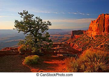 východ slunce, do, canyonlands