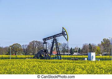 výroba, o, nerost, nafta, do, usedom
