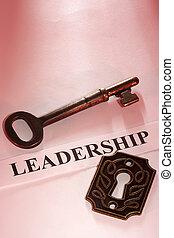 vůdcovství, klapka