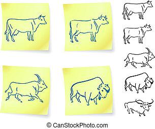 vaca, él, búfalo, bisonte, poste, notas