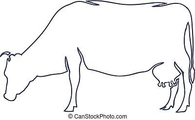 vaca, aislado, mano, fondo., vector, dibujado, blanco