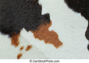 vaca, cabelo, artificial, surface.