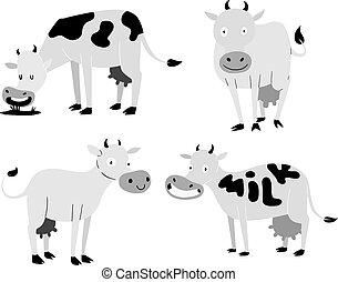 vaca, caricatura, caráteres