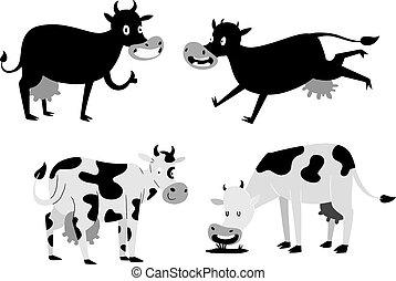 vaca, caricatura, caracteres
