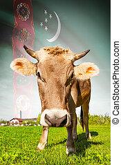 vaca, con, bandera, fondo, serie, -, turkmenistán
