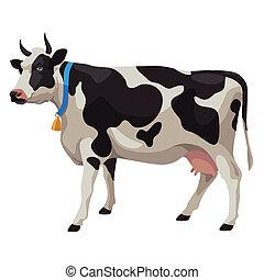 vaca, isolado, pretas, vista, branca, lado