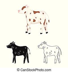 vaca, novilla, símbolo, objeto, web., aislado, colección, ...