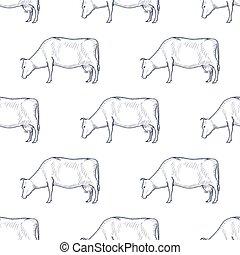 vaca, patrón, seamless, ilustración, fondo., vector, ...