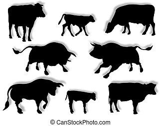 vaca, touro, e, bezerro, em, silueta