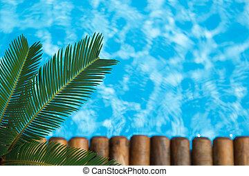vacaciones del verano, concepto