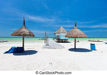 vacaciones tropicales