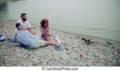 vacances, avoir, picnic., multigeneration, lac famille