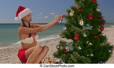 vacances, exotique, recours, temps, plage, noël