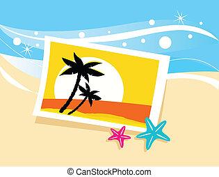 vacances, photo, à, exotique, paumes