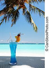 vacances tropicales