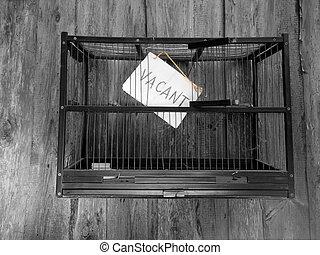 Vacant Bird Cage