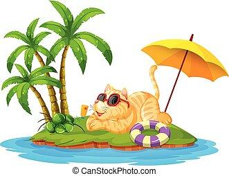 vacanza estate, gatto