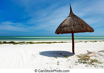 vacanza tropicale