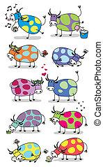 vacas, divertido, conjunto