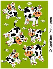 vacas, loco