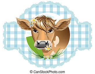 vacas, su, flores, dientes