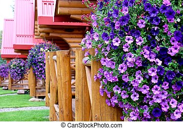 Vacation cabins and flowers.