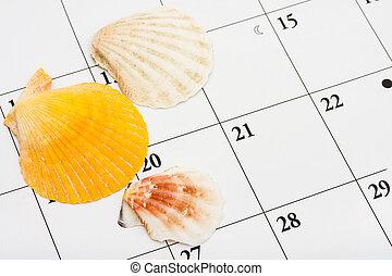 Three sea shells sitting on a calendar, vacation date