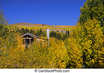 Vacation home in the Aspens