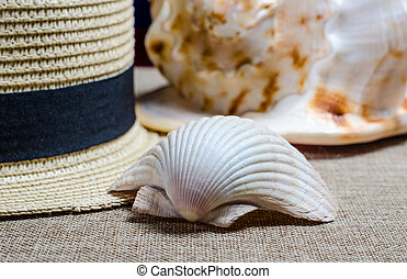 vacation still life with straw hat and sea shells on the mat