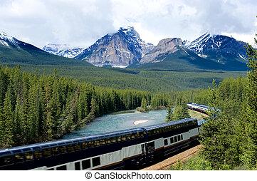 Train in Canadian Rockies