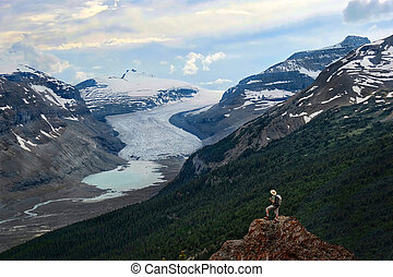 Vacation travel in the Canadian Rockies.